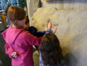 three young children placing their hands into a Diatryma track fossil